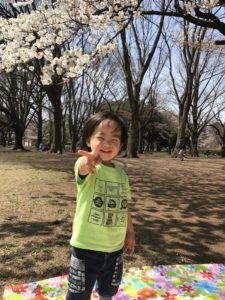 小金井公園の桜と息子